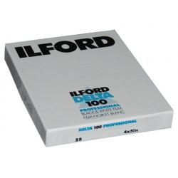 Ilford Delta 100 4x5 (10,2 x 12,7 cm) / 25 sheets